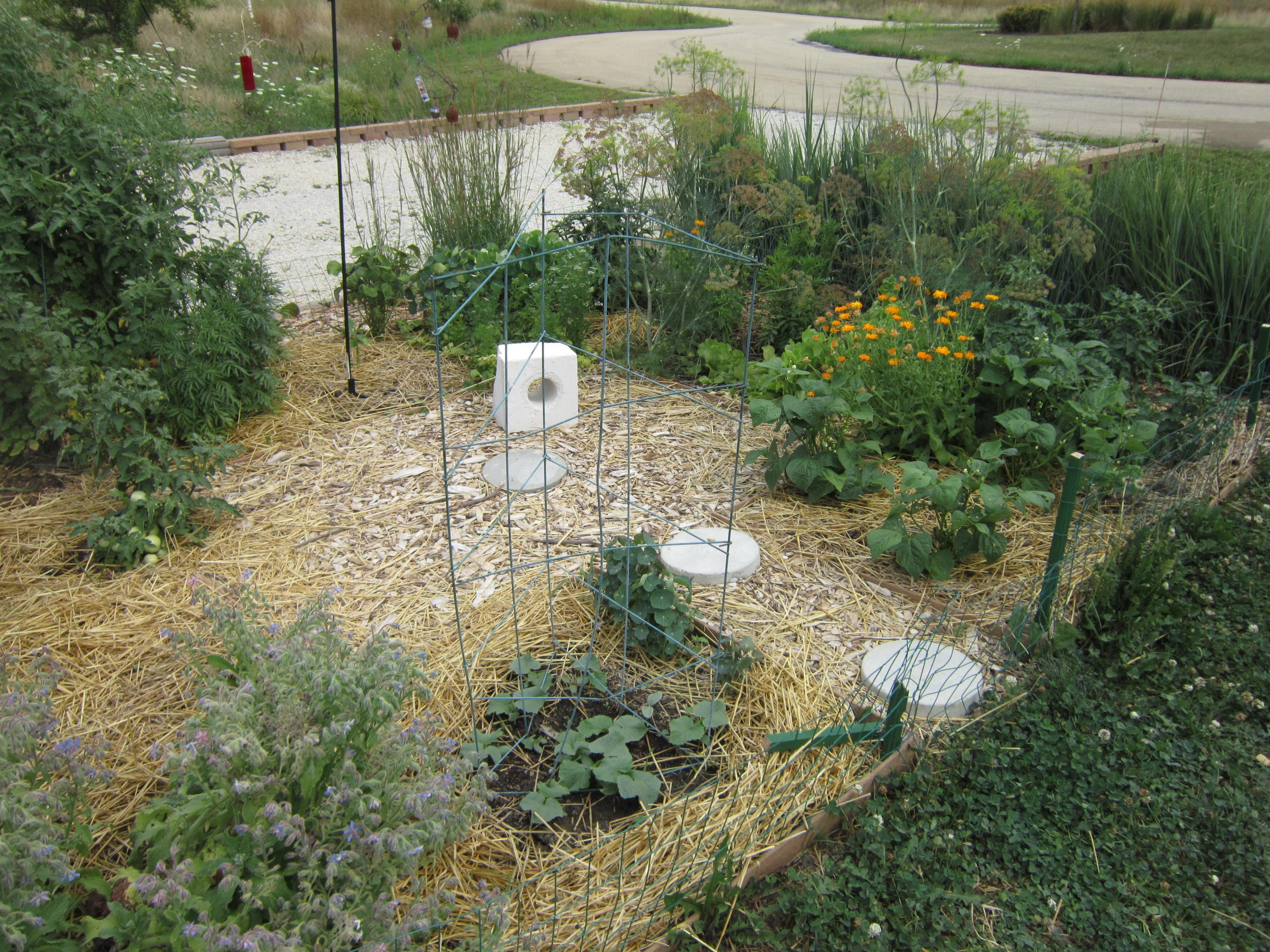 permaculture design course pletion