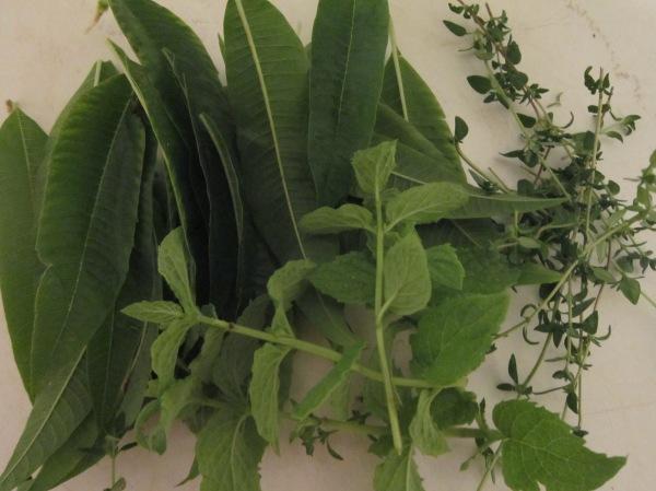 Lemon Verbena et al.