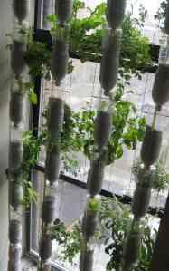 Image source: npr.org