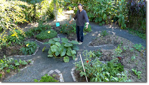 Permaculture for urban homes and small spaces these for Permaculture exemple