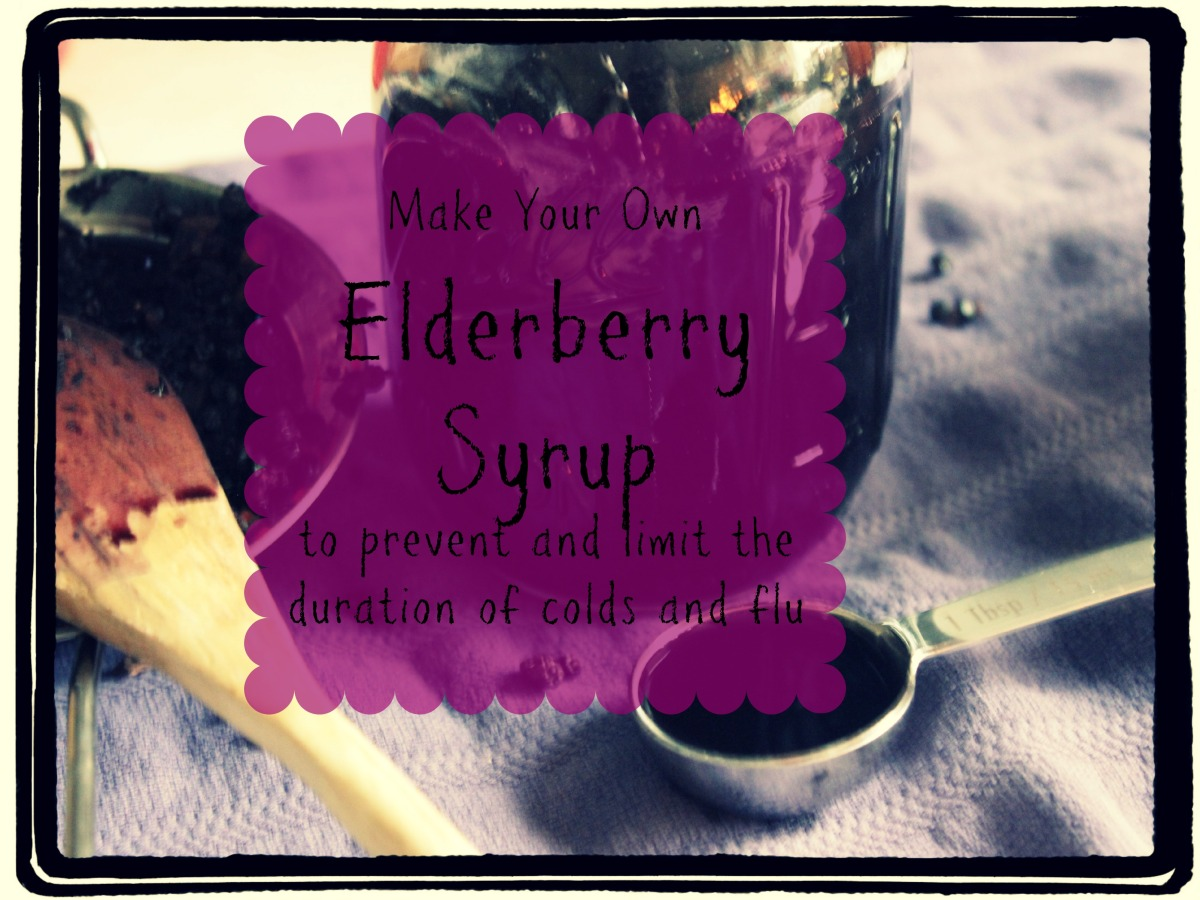 Prevent Colds & Flu with DIY Elderberry Syrup