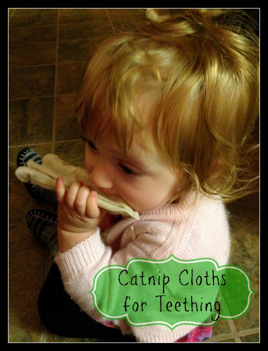 Catnip Cloths for Teething