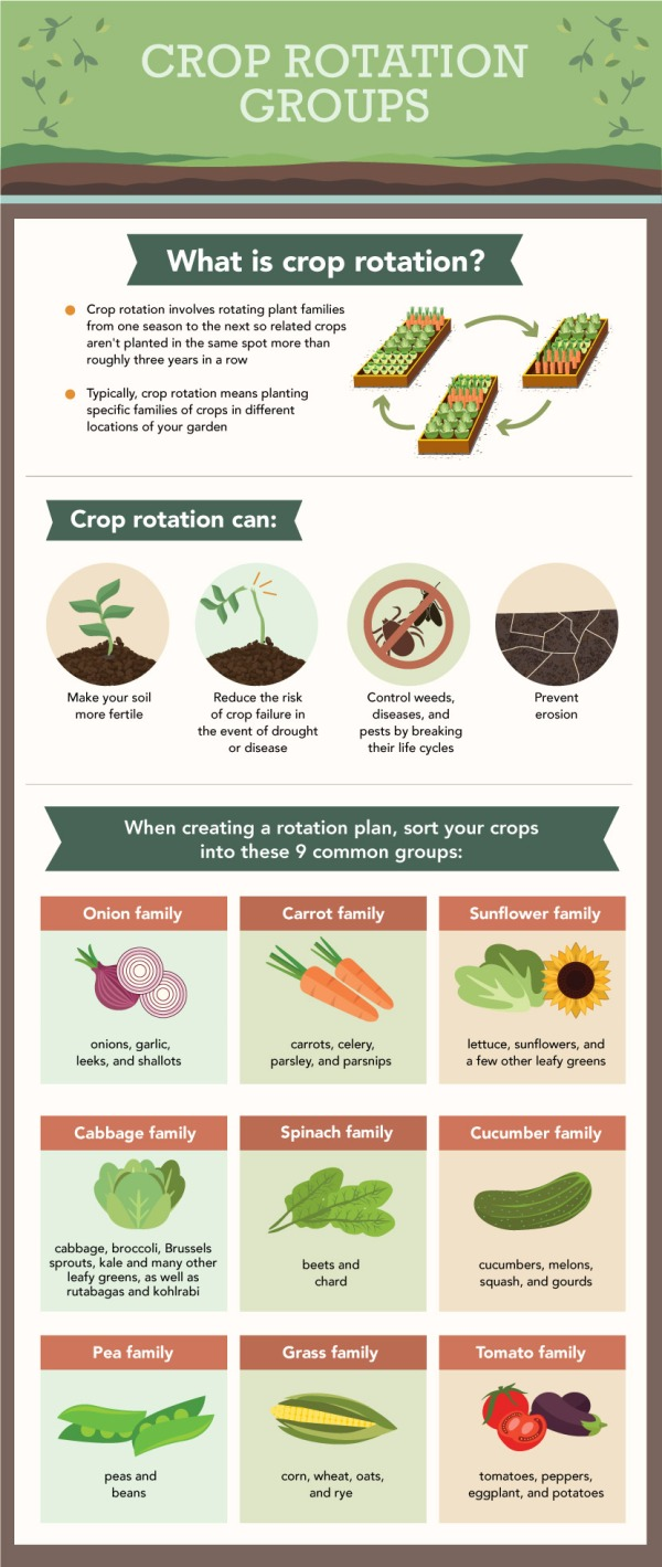 crop-rotation-003