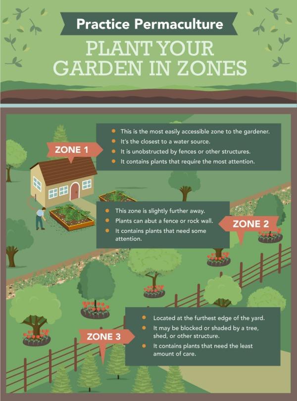practice-permaculture-garden-zones-002
